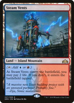 grn 257 steam vents