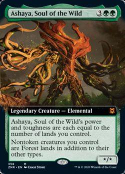 495645 Ashaya Soul of the Wild 358.original
